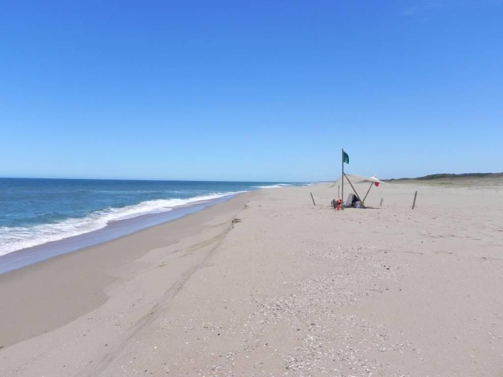 Venta  Punta del Este La Barra
